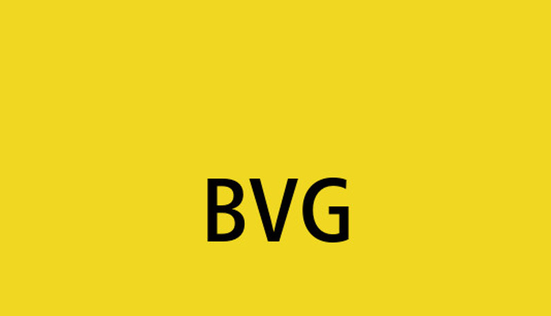 BVG Germany
